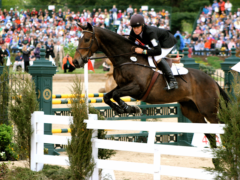 people watching live horse racing event with horse jumping hurdle